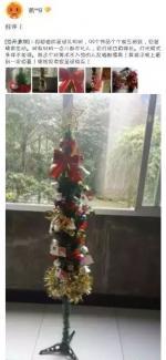 这是圣诞树还是
